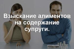 razmer-alimentov-na-zhenu-v-dekrete
